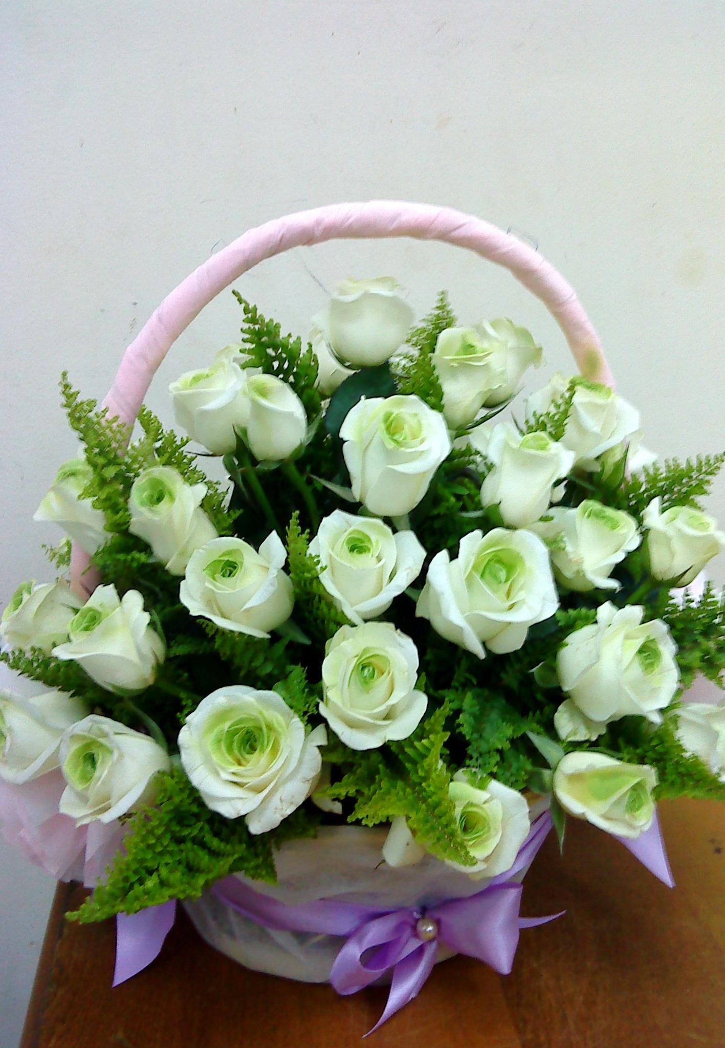 Lẵng hoa hồng trắng viền xanh cực đẹp