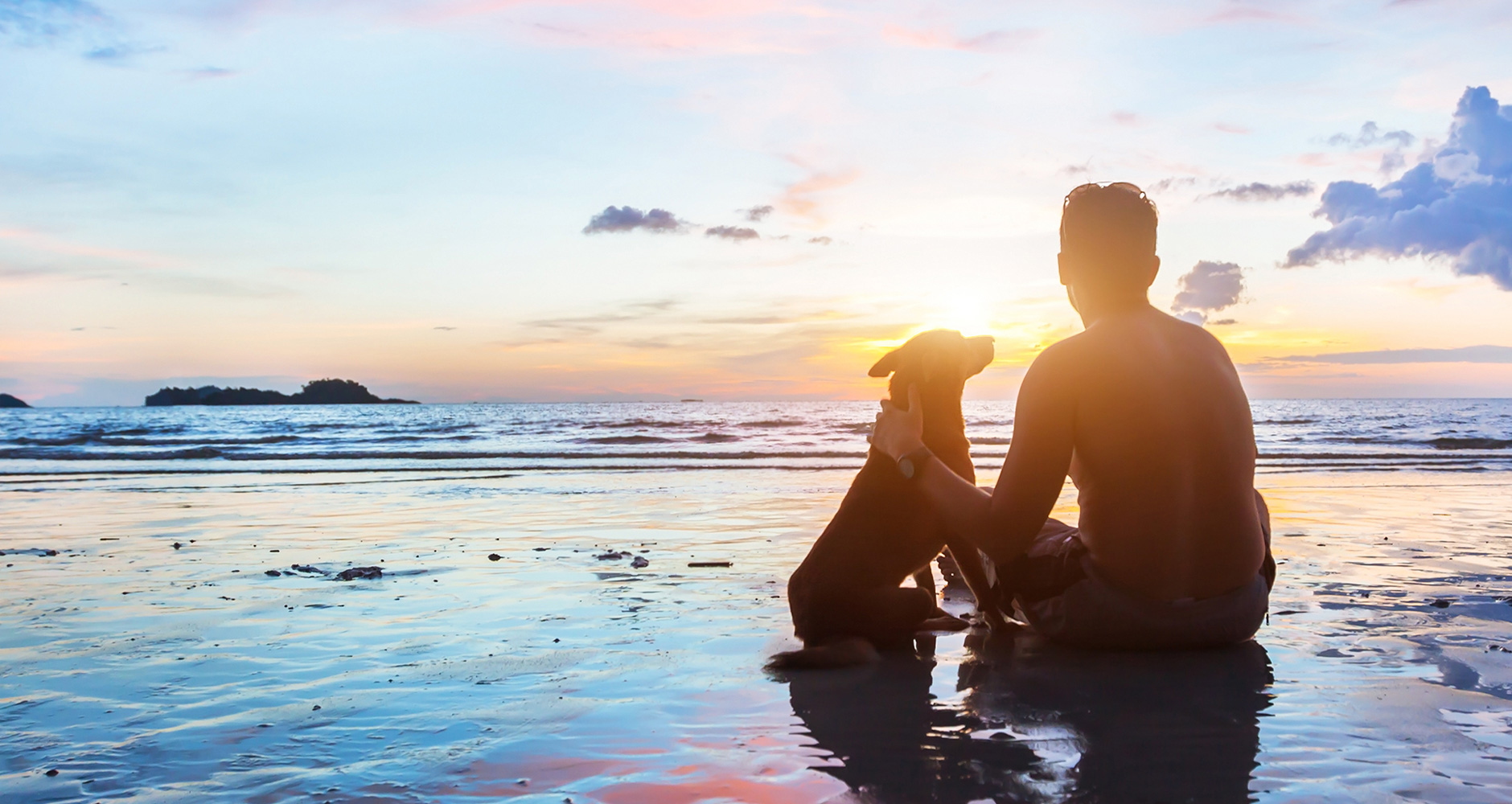 Người yêu không có nhưng chó thì phải có một con để cùng đi tắm biển mùa hè