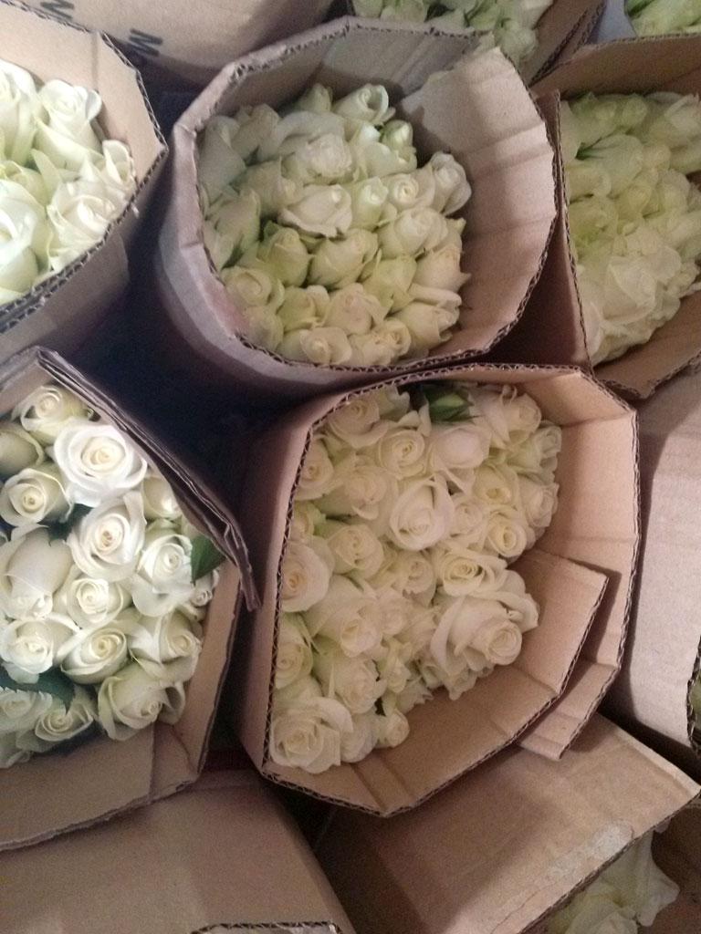 Những bó hoa hồng trắng được xếp sẵn chuẩn bị bán