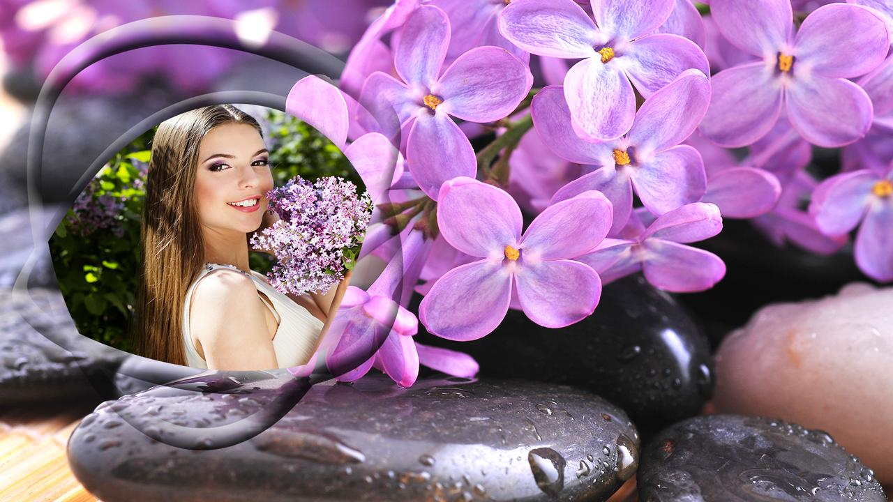 Những bông hoa tử đinh hương trên sỏi