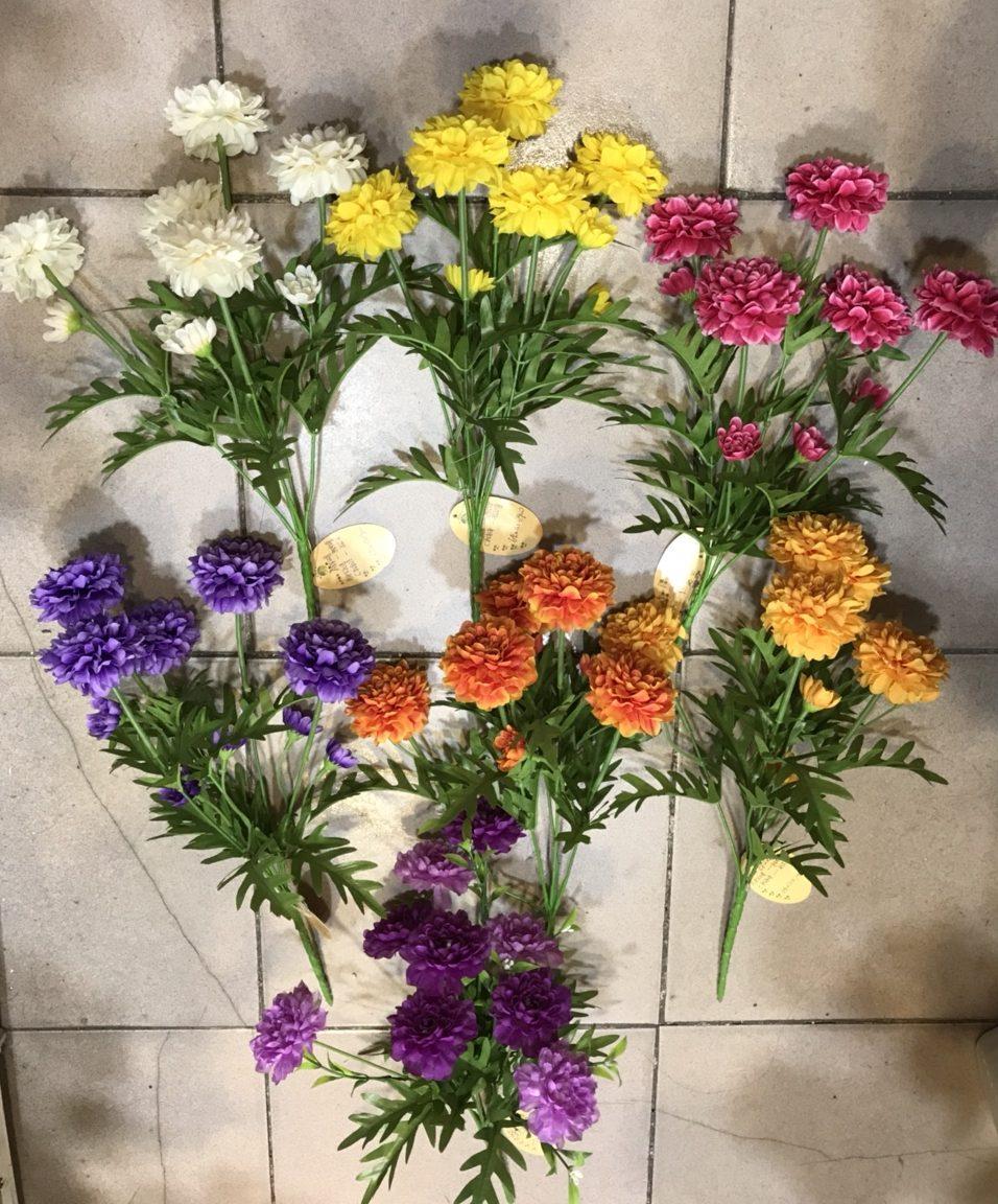 Những cây hoa cúc vạn thọ đẹp