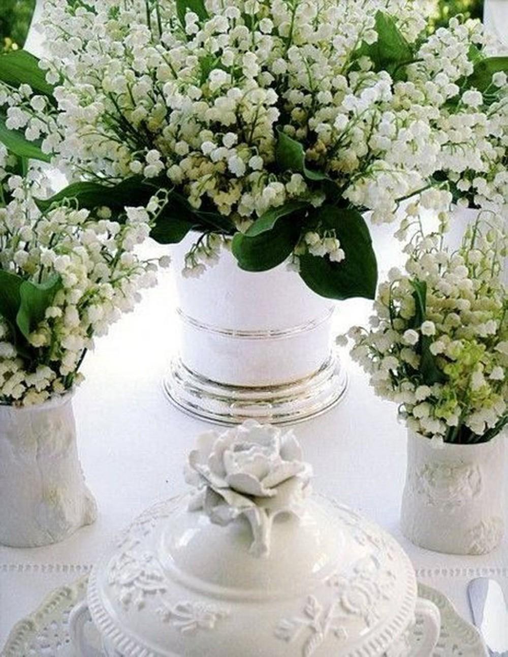 Những lọ hoa lan chuông cảnh cực đẹp