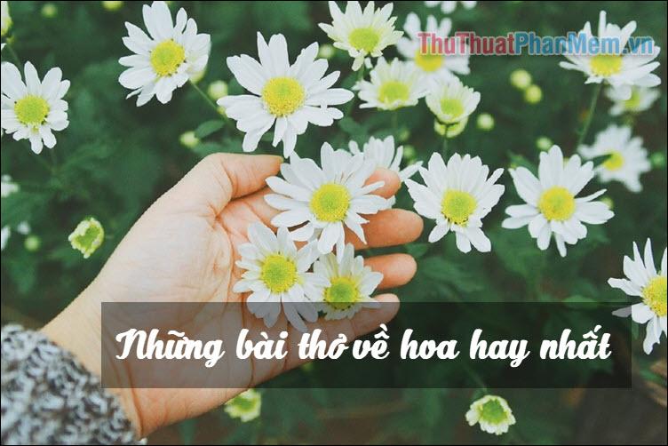 Những bài thơ về hoa hay nhất