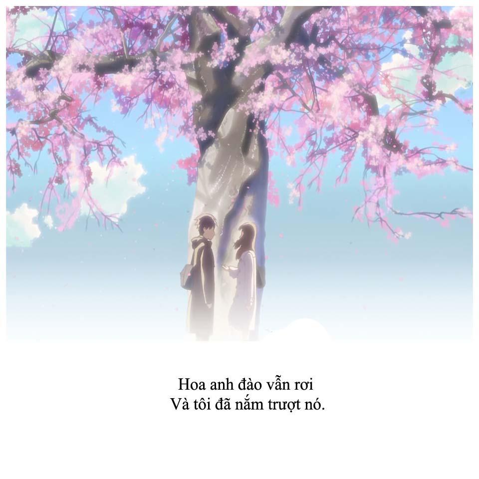 Hình ảnh những câu nói hình ảnh quote buồn đẹp nhất
