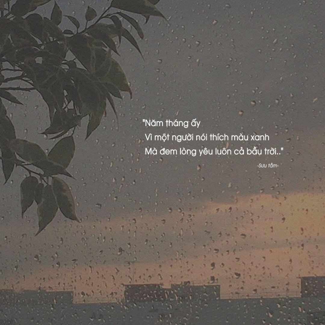 Hình ảnh quote buồn