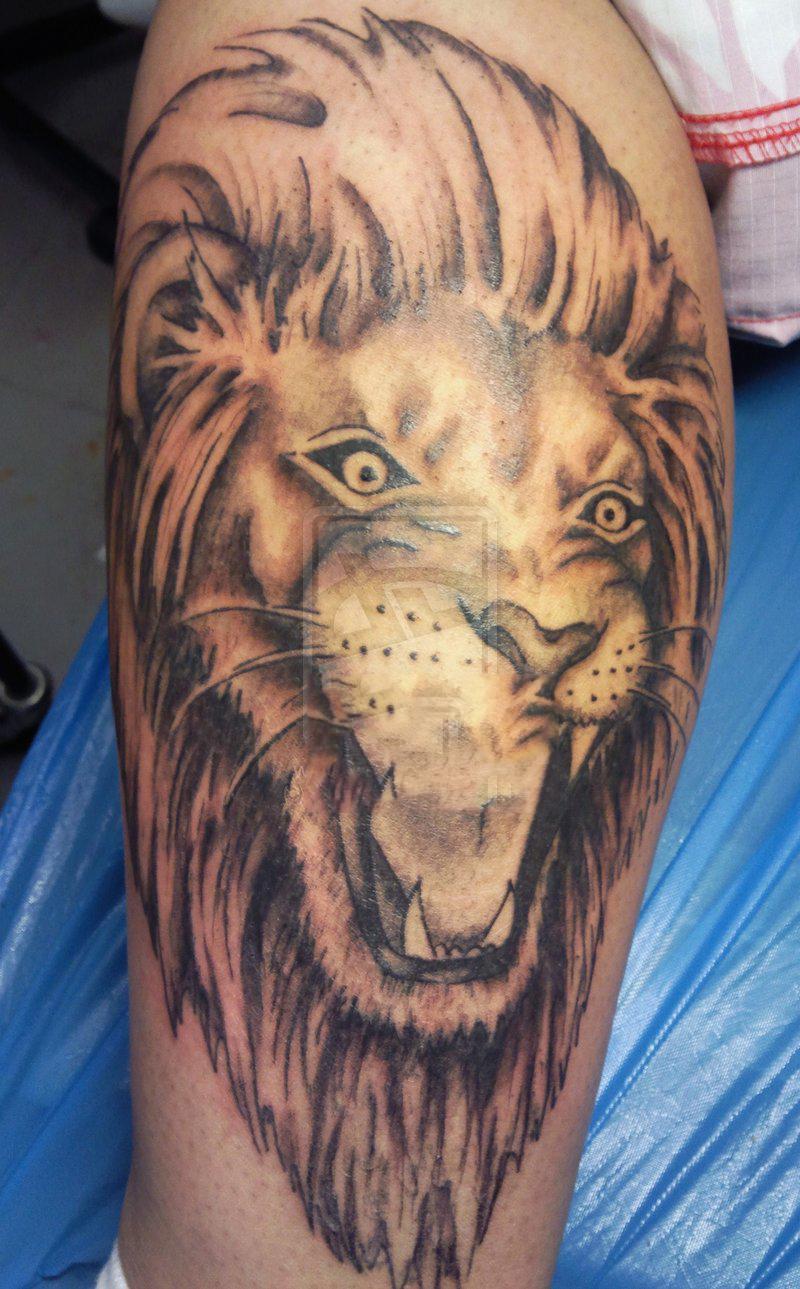 Hình xăm sư tử nhỏ đẹp