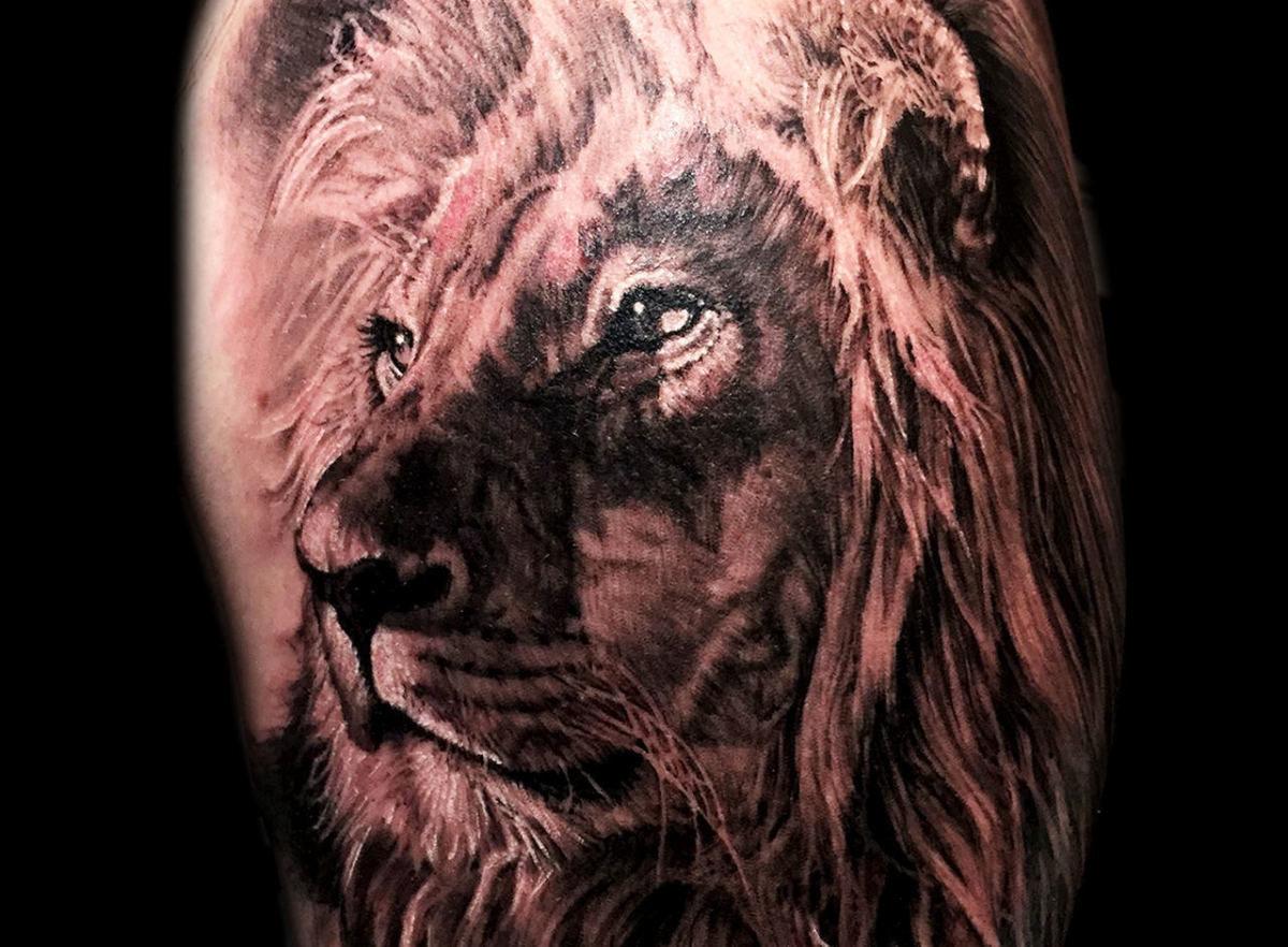 Hình xăm sư tử ở bắp tay đẹp nhất cho nam