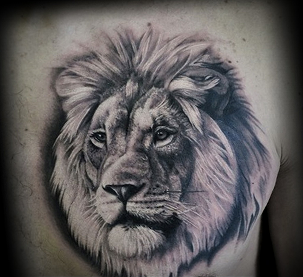 Hình xăm sư tử và hoa hồng