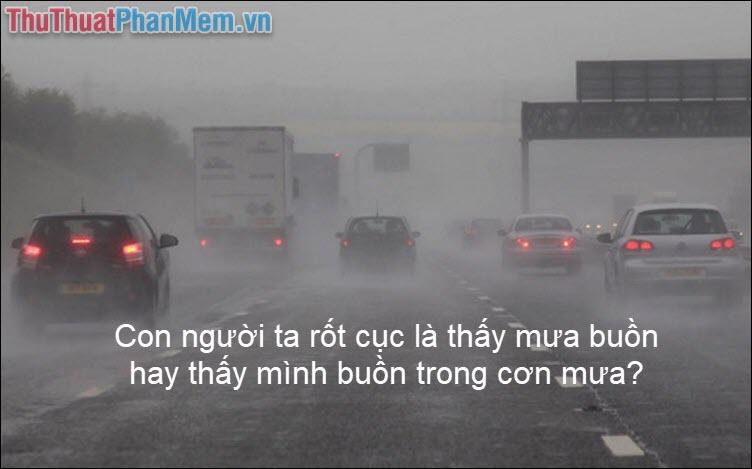 Con người ta rốt cục là thấy mưa buồn hay thấy mình buồn trong cơn mưa