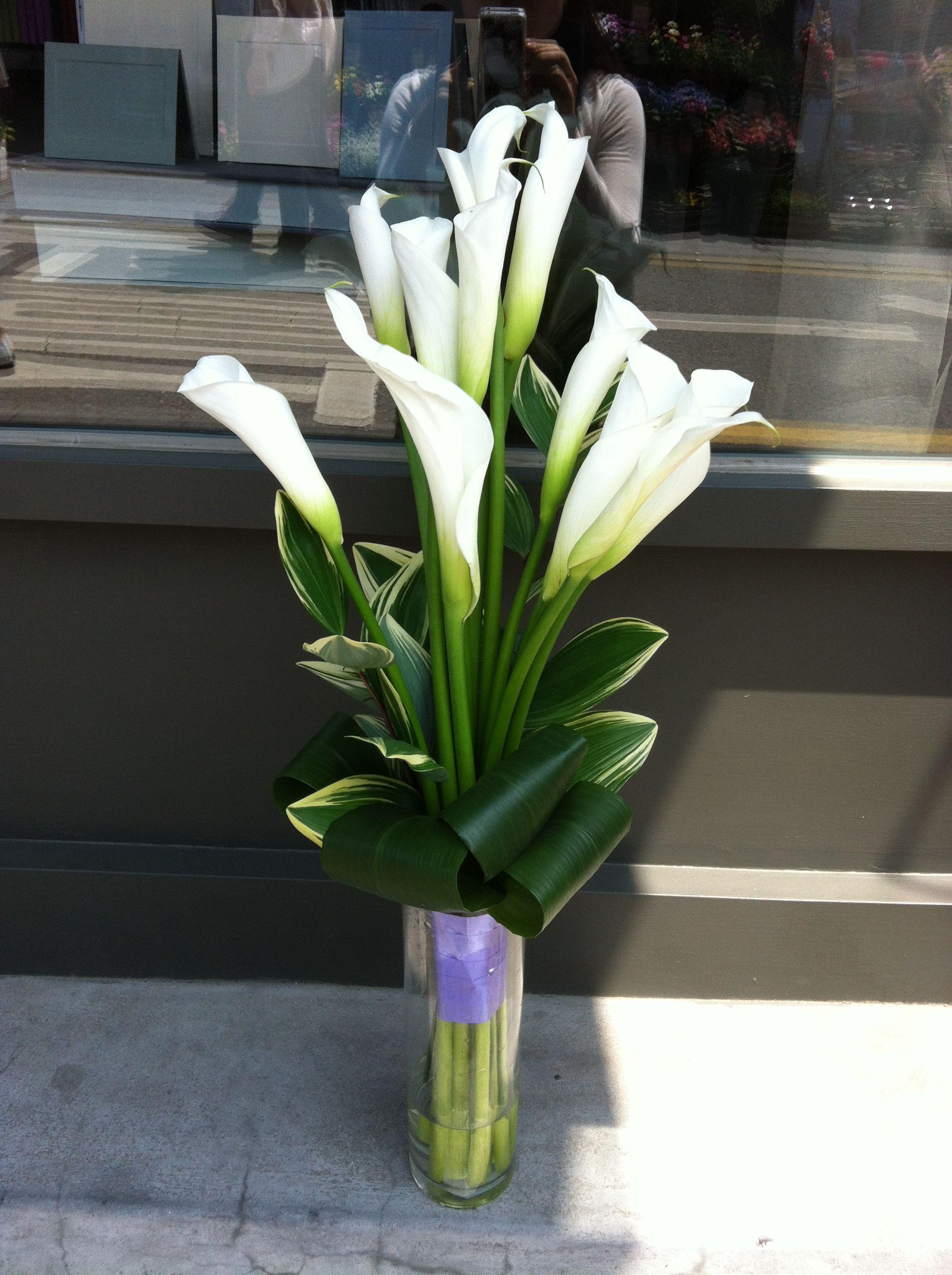 Hình ảnh lọ hoa loa kèn trắng đẹp nhất
