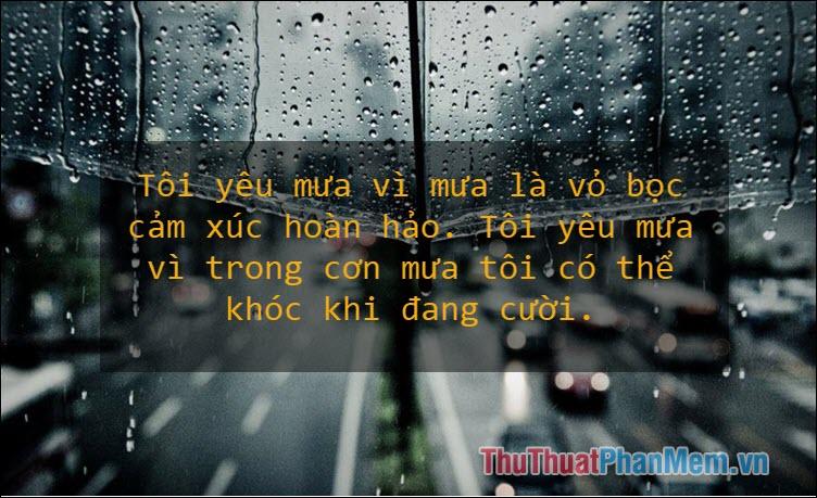 Tôi yêu mưa vì mưa là vỏ bọc cảm xúc hoàn hảo