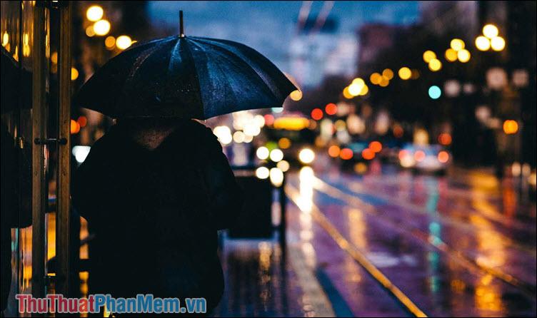 Đêm cô đơn – Tài Nguyễn