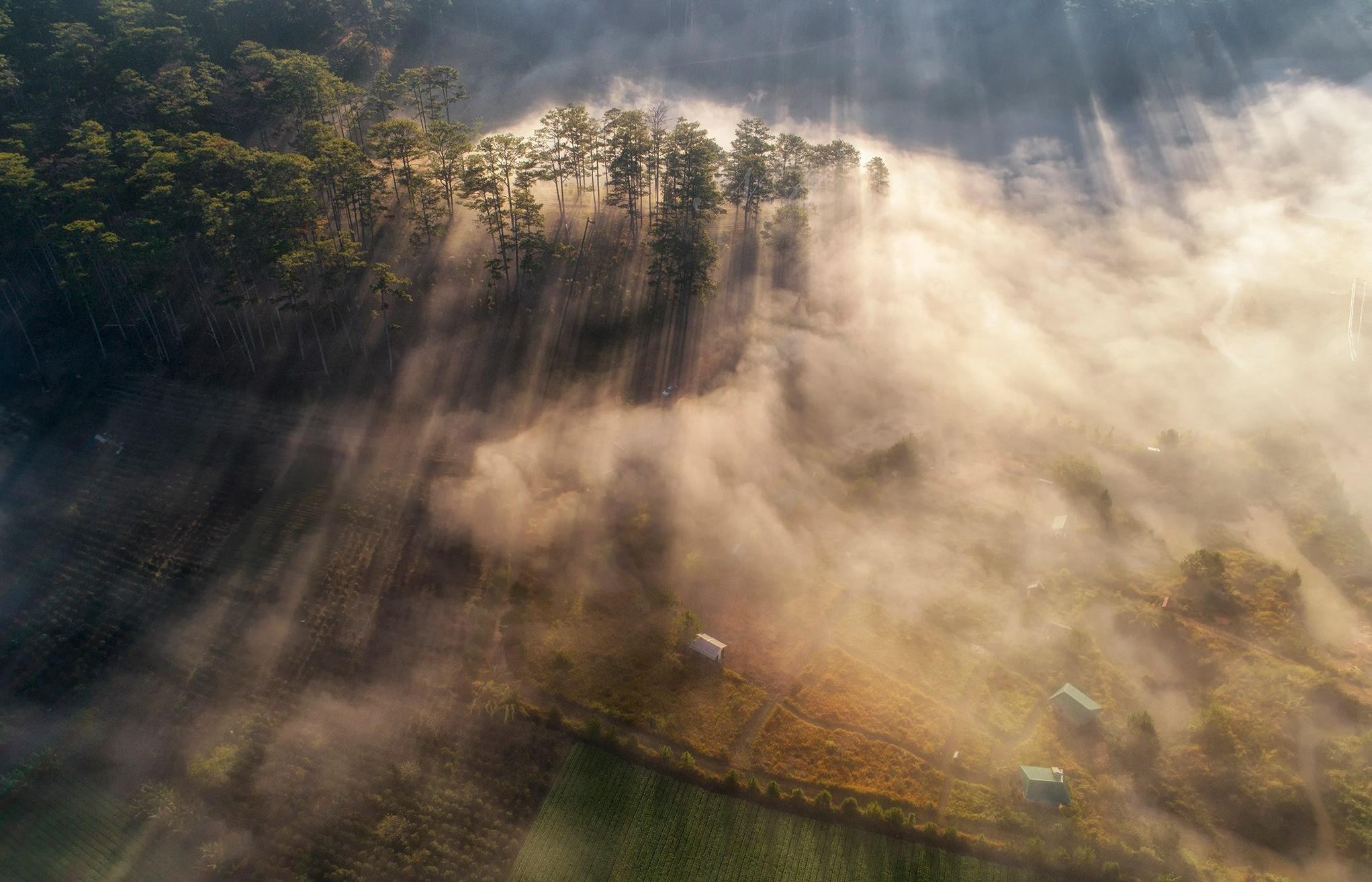 Ngày bình minh sương khói tuyệt đẹp