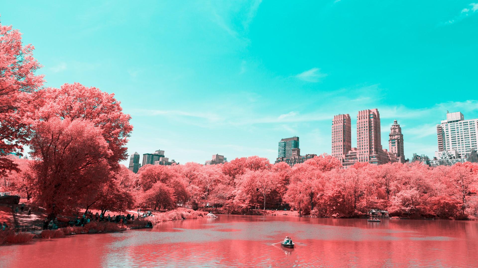Hình nền mùa xuân trong xanh