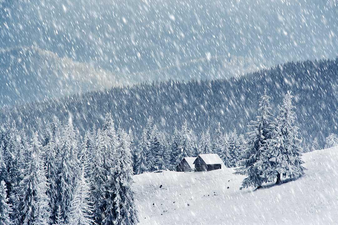 Hình ảnh bão tuyết rơi