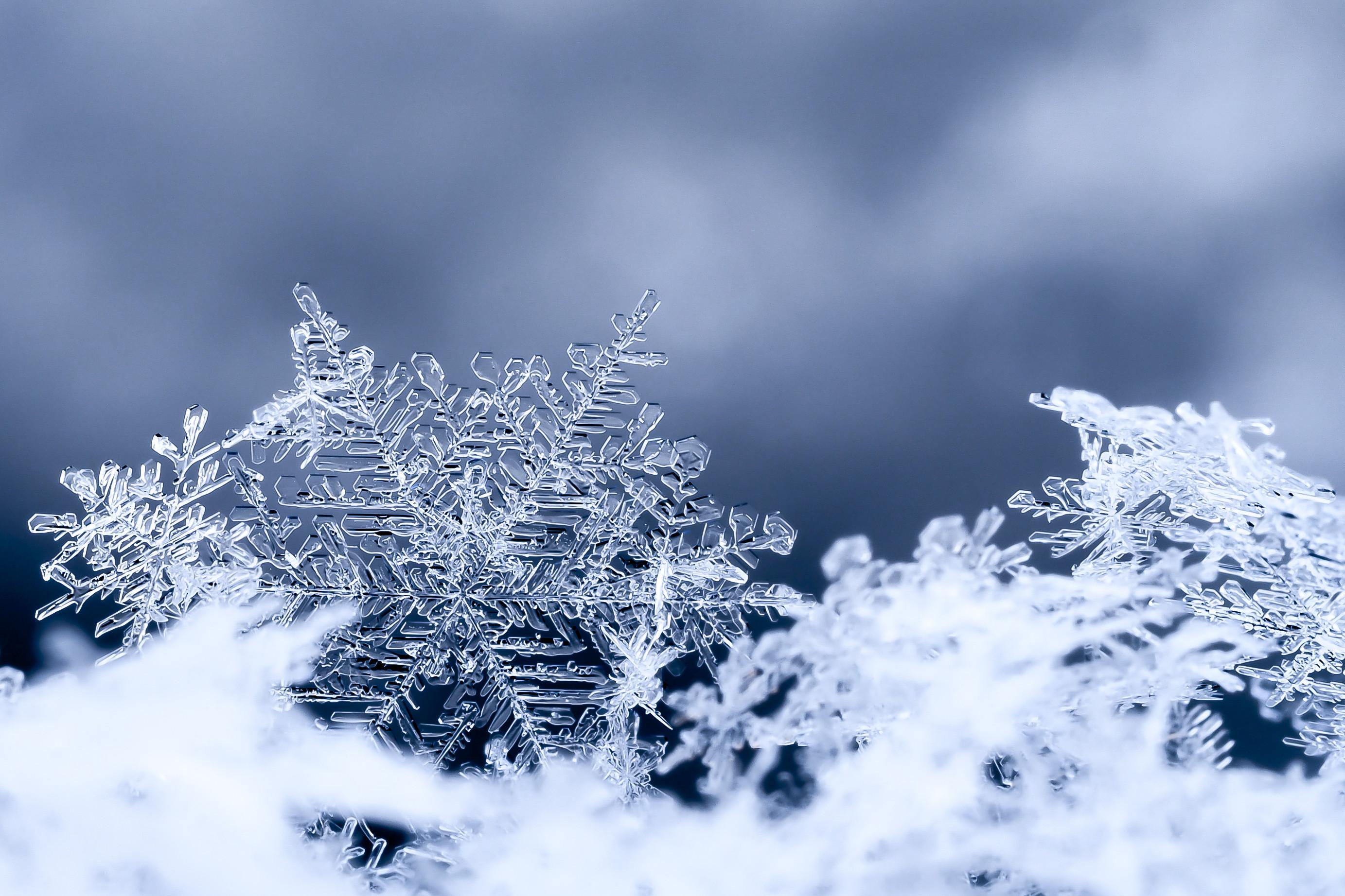Hình ảnh bông tuyết rơi đẹp