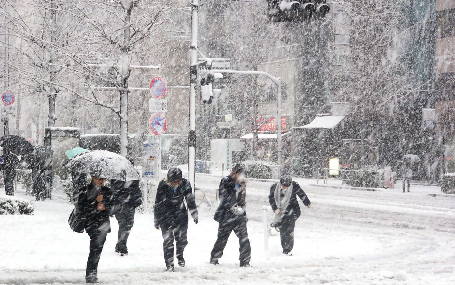 Hình ảnh ngày tuyết rơi