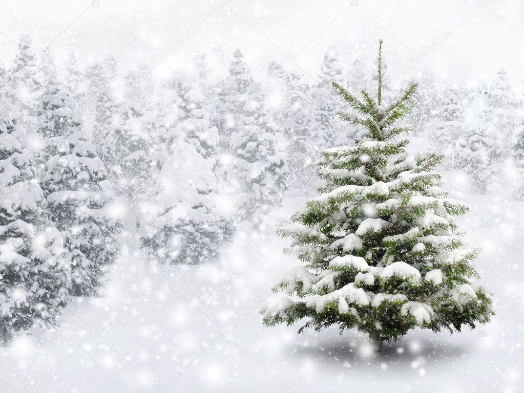 Hình ảnh noel ngày tuyết rơi