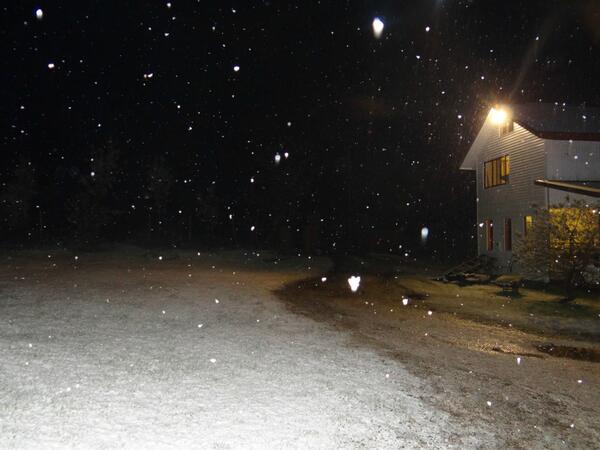 Hình ảnh tuyết rơi bên đường