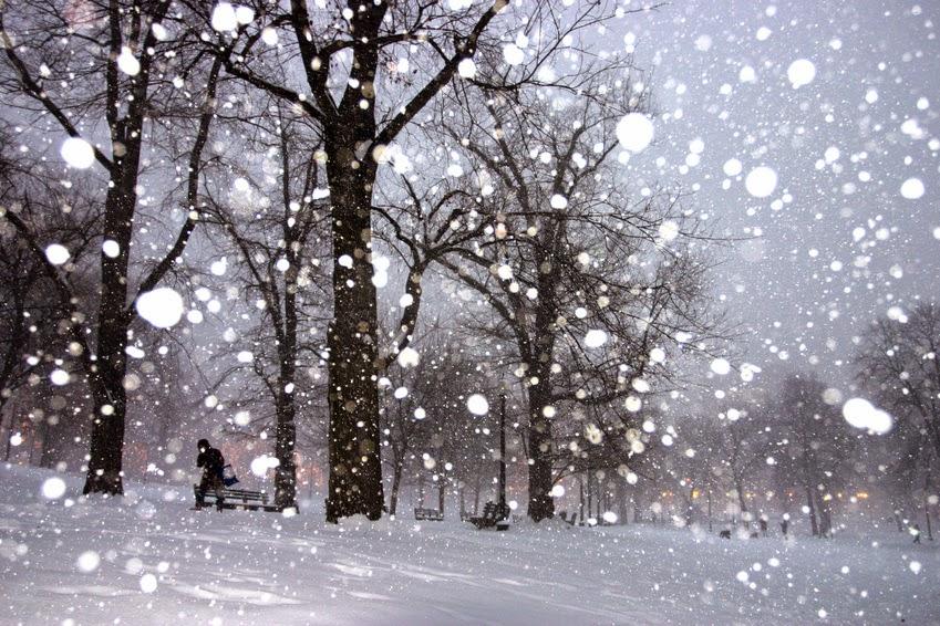 Hình ảnh tuyết rơi dày
