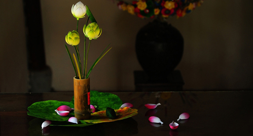 Cách cắm hoa sen đầy trang nhã