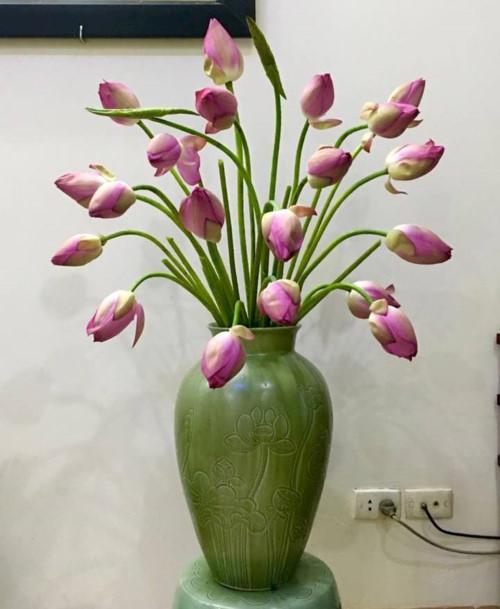 Cách cắm hoa sen trong lọ xanh cực đẹp