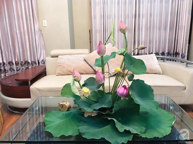 Cắm hoa sen và lá sen rất sang trọng