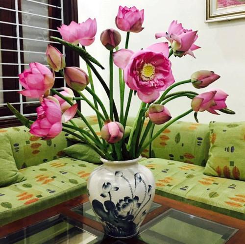 Hình ảnh cách cắm hoa sen trong lọ cực đẹp