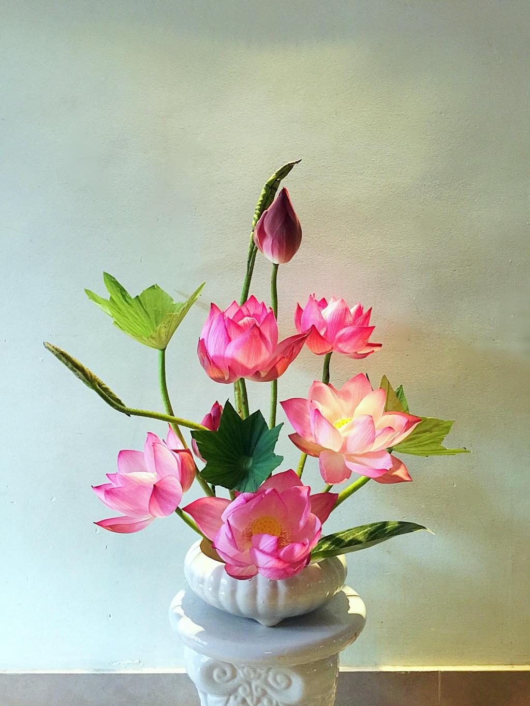 Hình ảnh lọ hoa sen cực đẹp