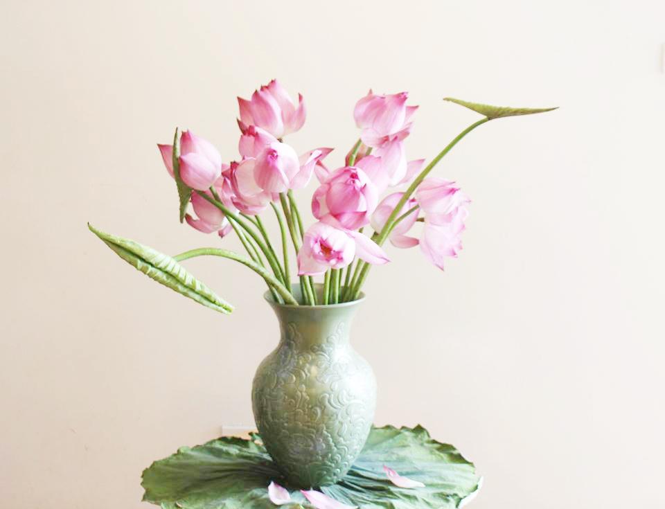 Hoa sen cắm lọ bình xanh cực đẹp