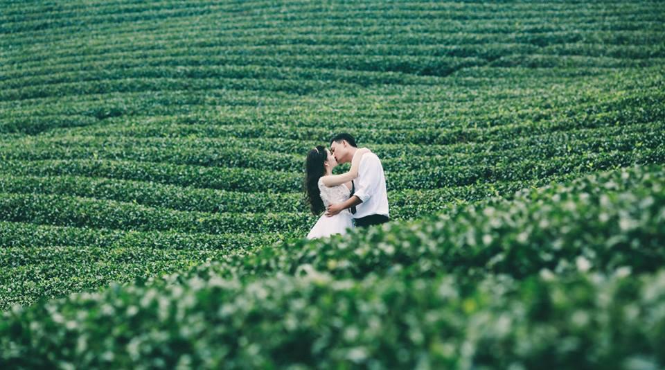 Cặp đôi kiss nhau tại đồi chè ở Lâm Đồng