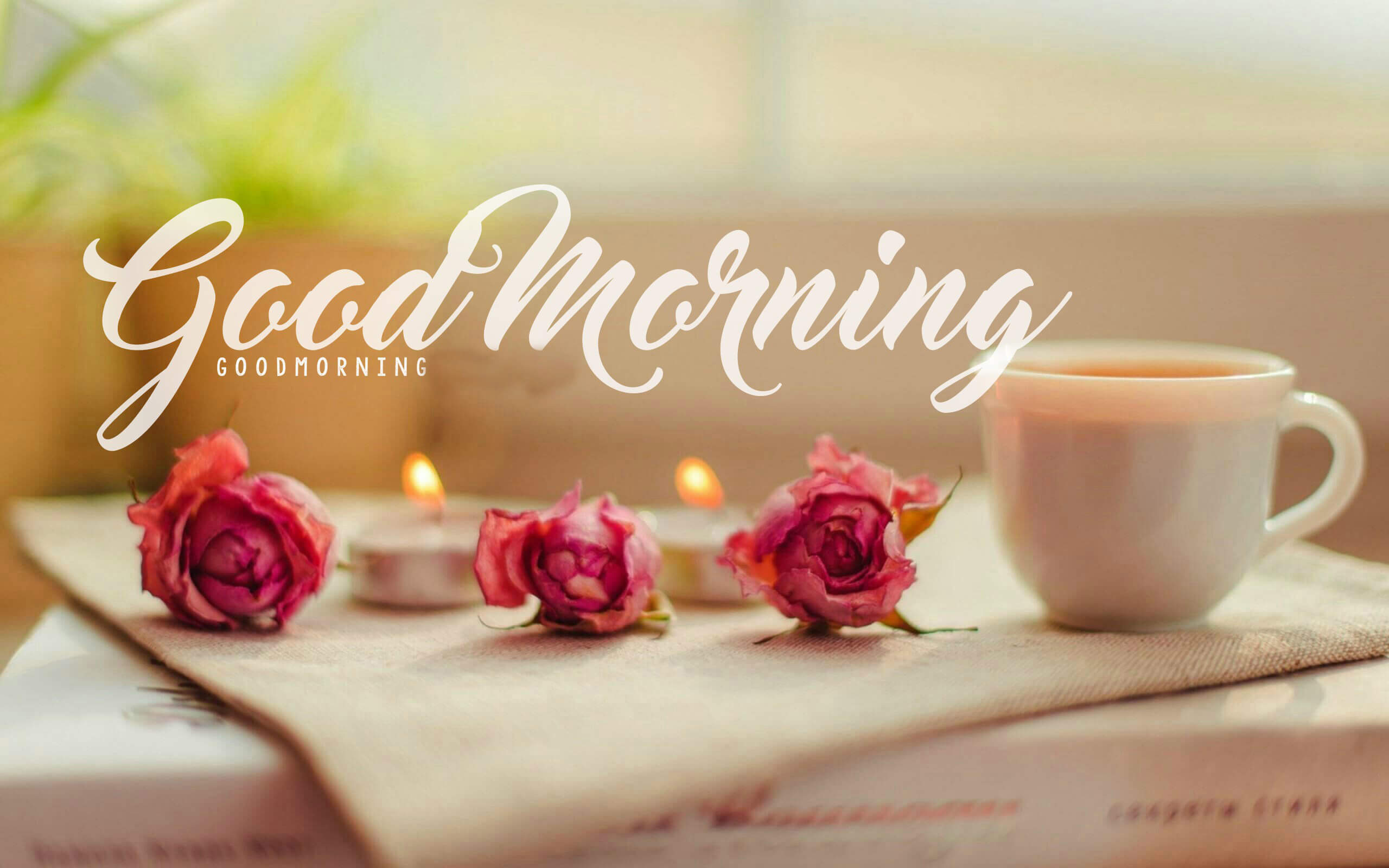 Hình ảnh Chào buổi sáng đẹp