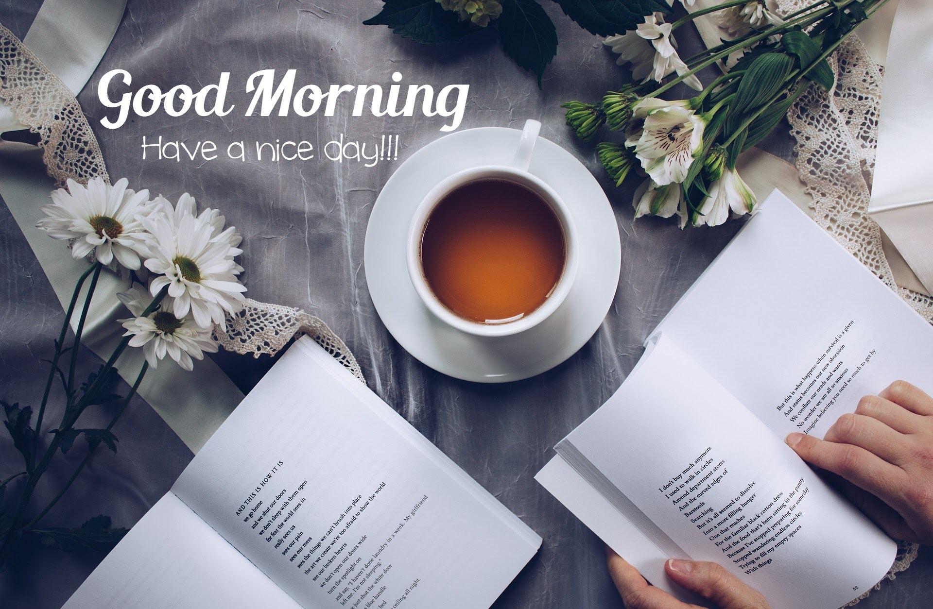 Hình ảnh chúc buổi sáng đẹp nhất - Ảnh nghệ thuật Book Tea