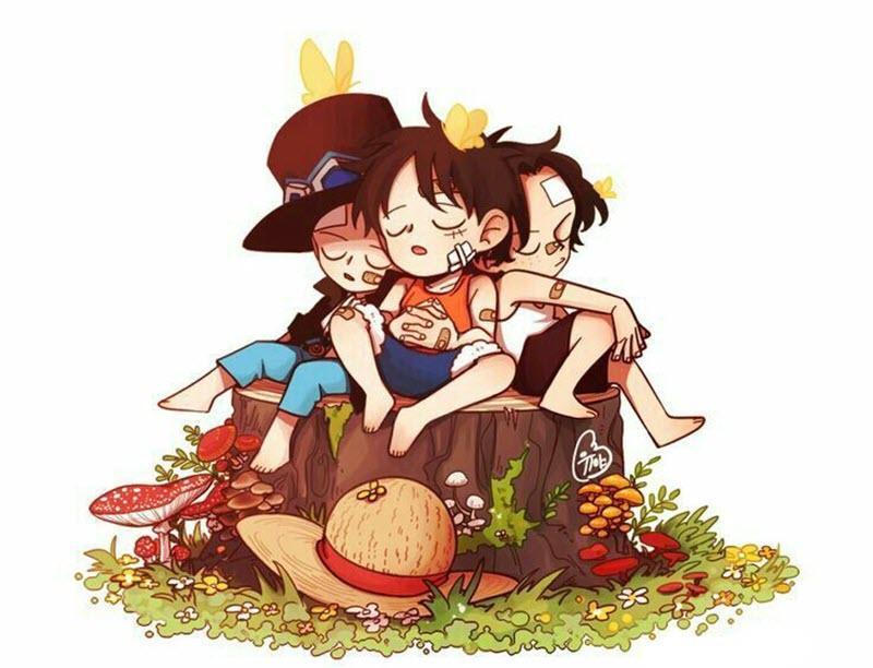 Những hình ảnh kute dễ thương của Luffy - One Piece