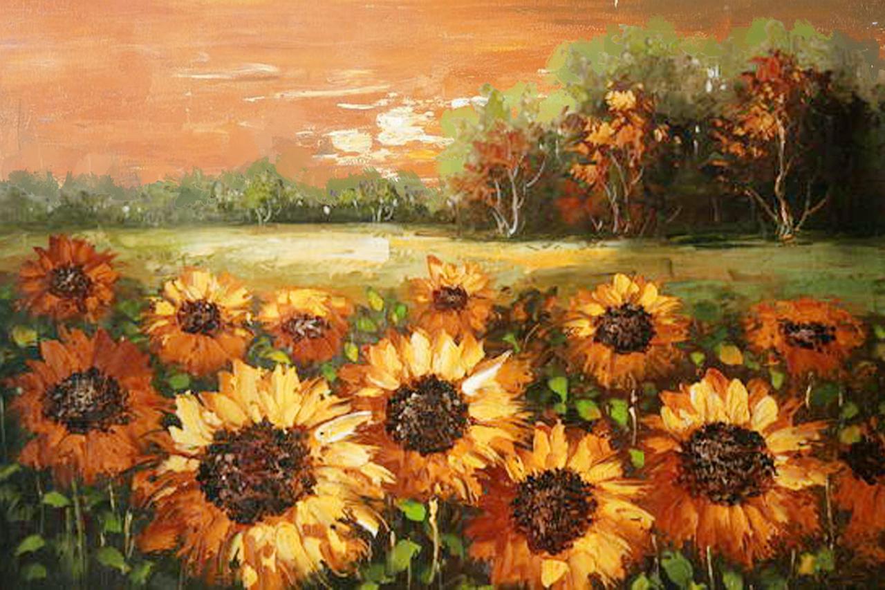 Bức vẽ cánh đồng hoa hướng dương ở ngoại ô