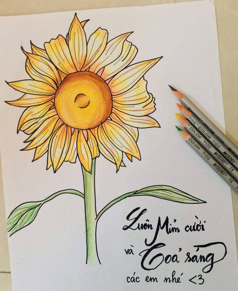 Bức vẽ hướng về ngày hội hoa hướng dương