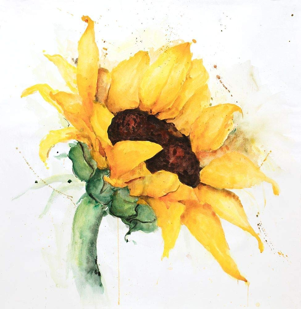 Bức vẽ một bông hoa hướng dương đẹp