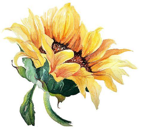 Tranh vẽ hoa hướng dương có hồn