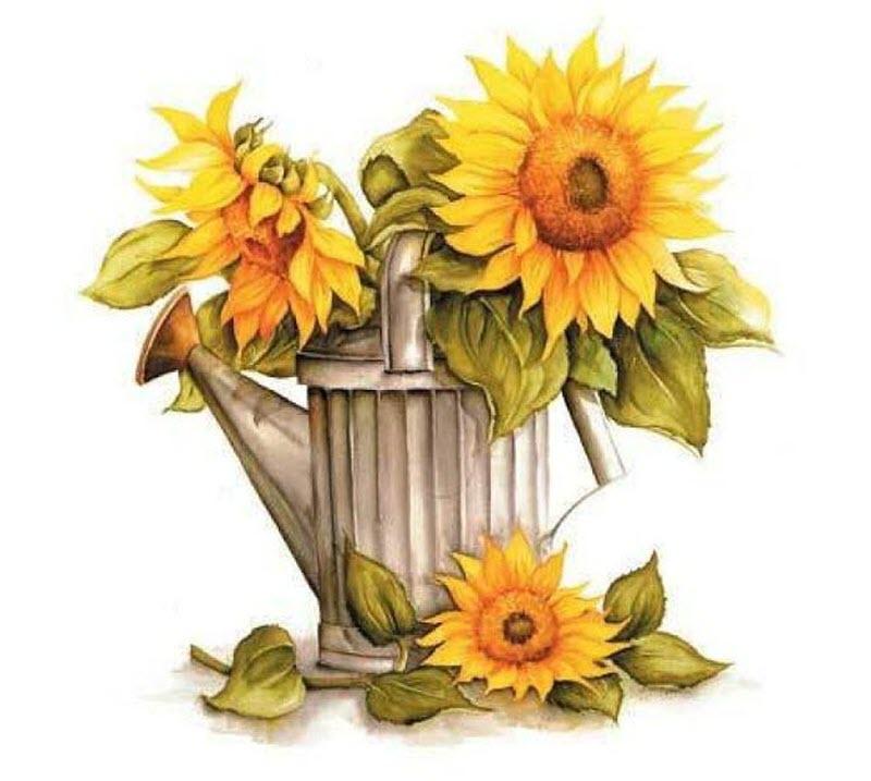 Tranh vẽ hoa hướng dương đẹp nhất