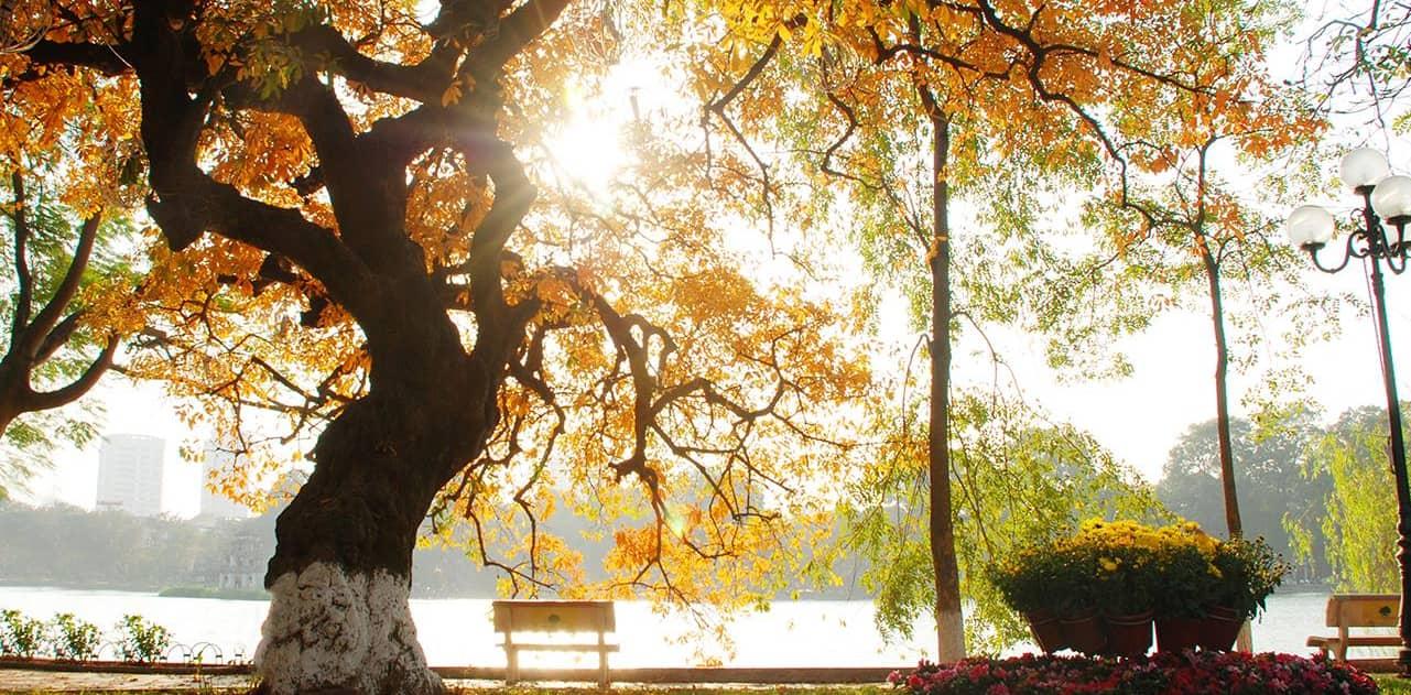 Hình ảnh nắng đẹp mùa thu ở mặt hồ