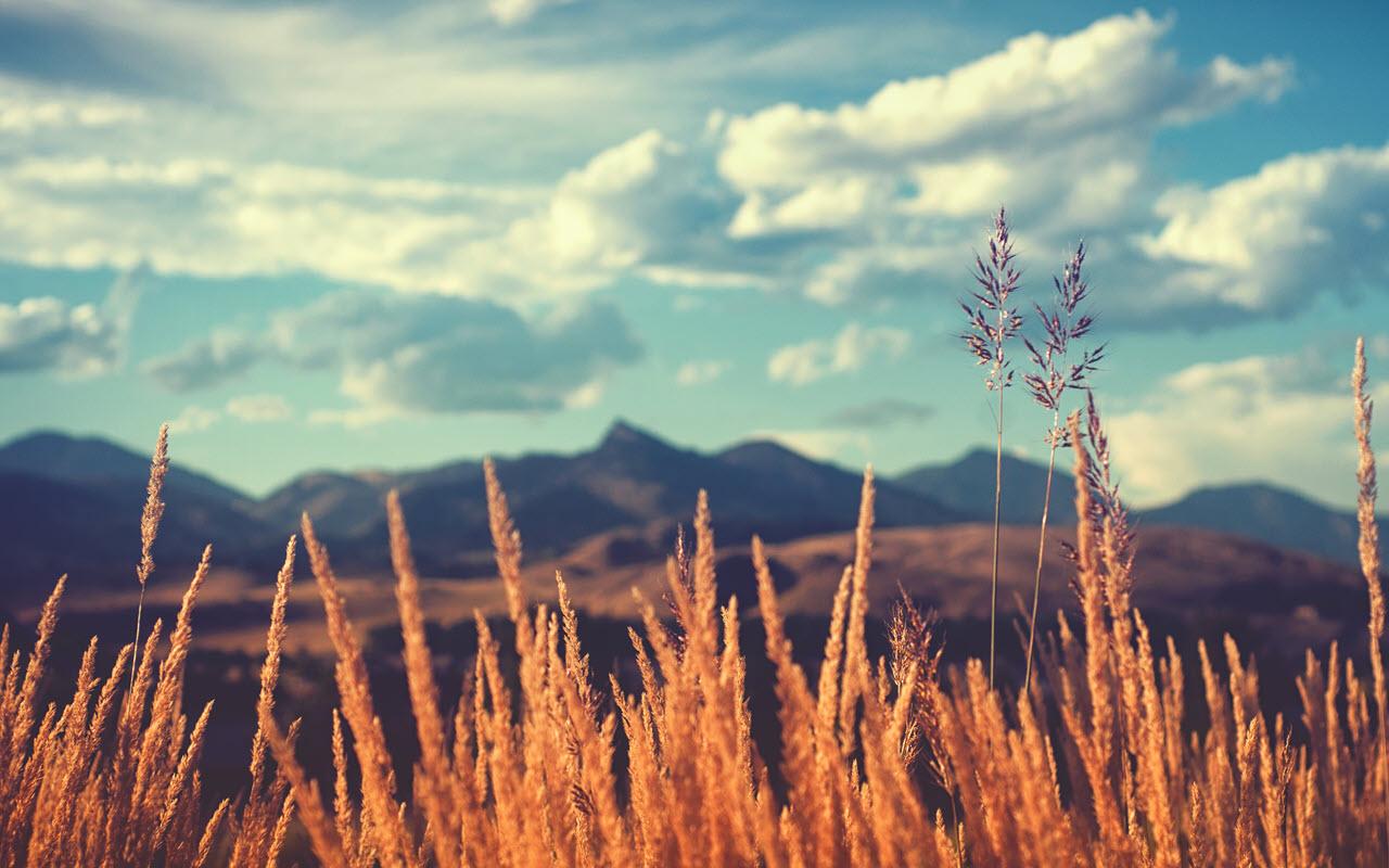 Hình ảnh nắng đẹp trong vùng đồng núi