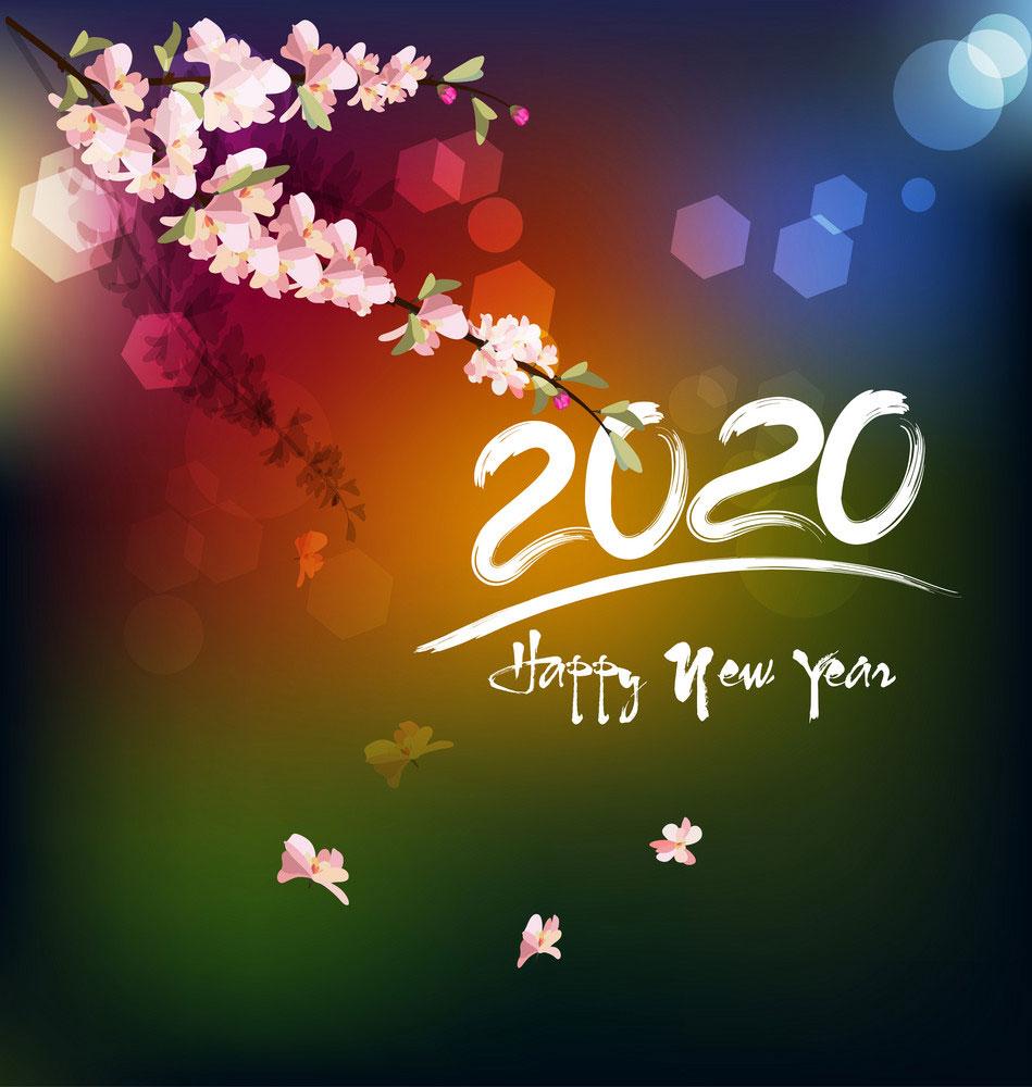 Ảnh chào năm mới 2020