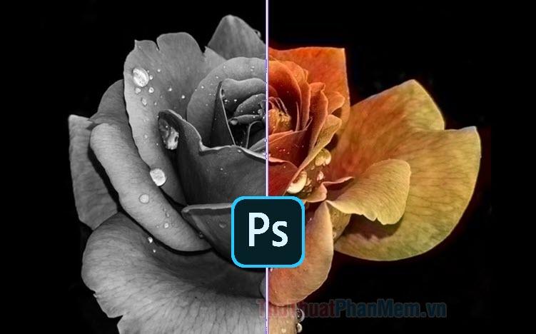 Cách chuyển ảnh màu sang đen trắng bằng Photoshop