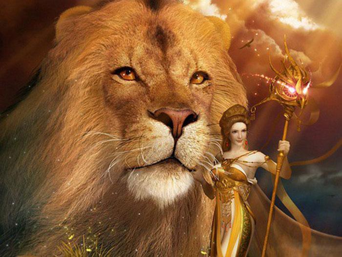 Hình ảnh về cung Sư Tử