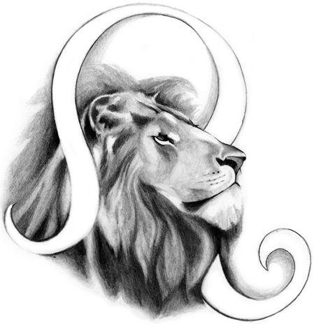 Hình vẽ cung Sư Tử