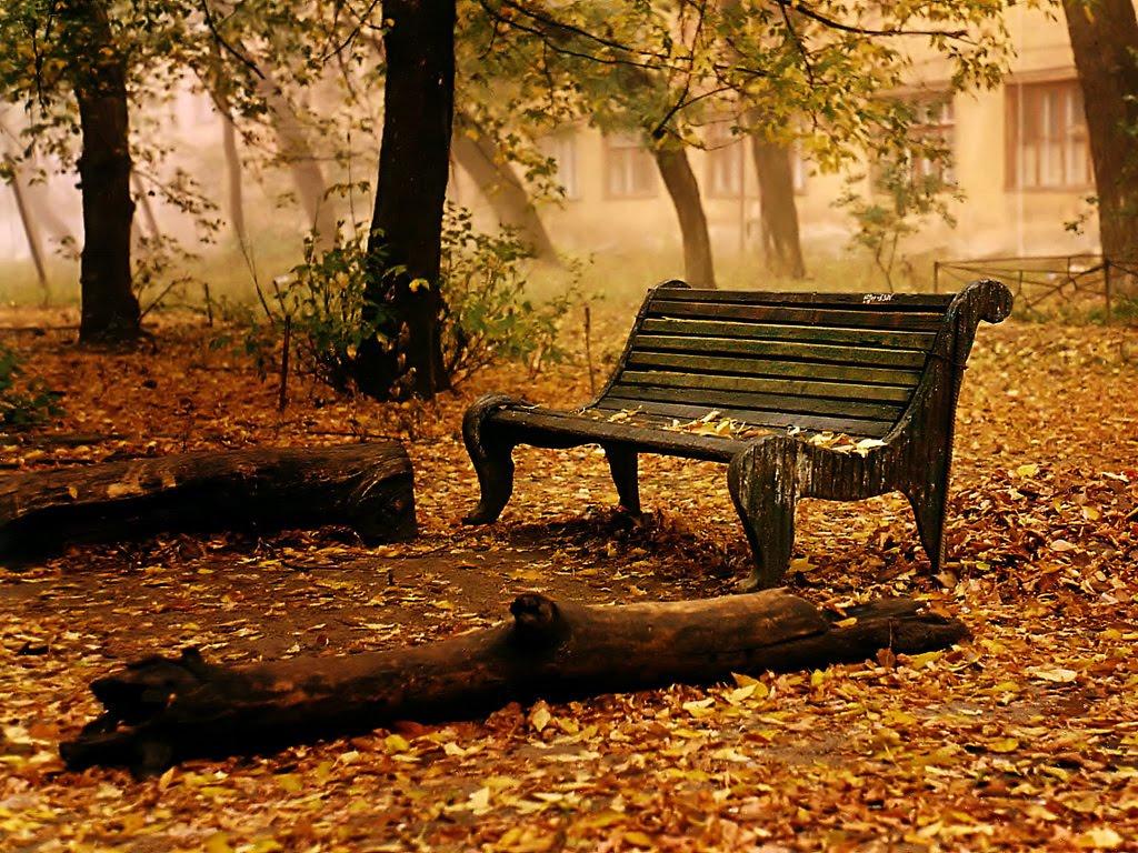 Ảnh phong cảnh cô đơn và buồn