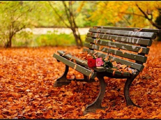 Hình ảnh buồn đẹp phong cảnh mùa thu