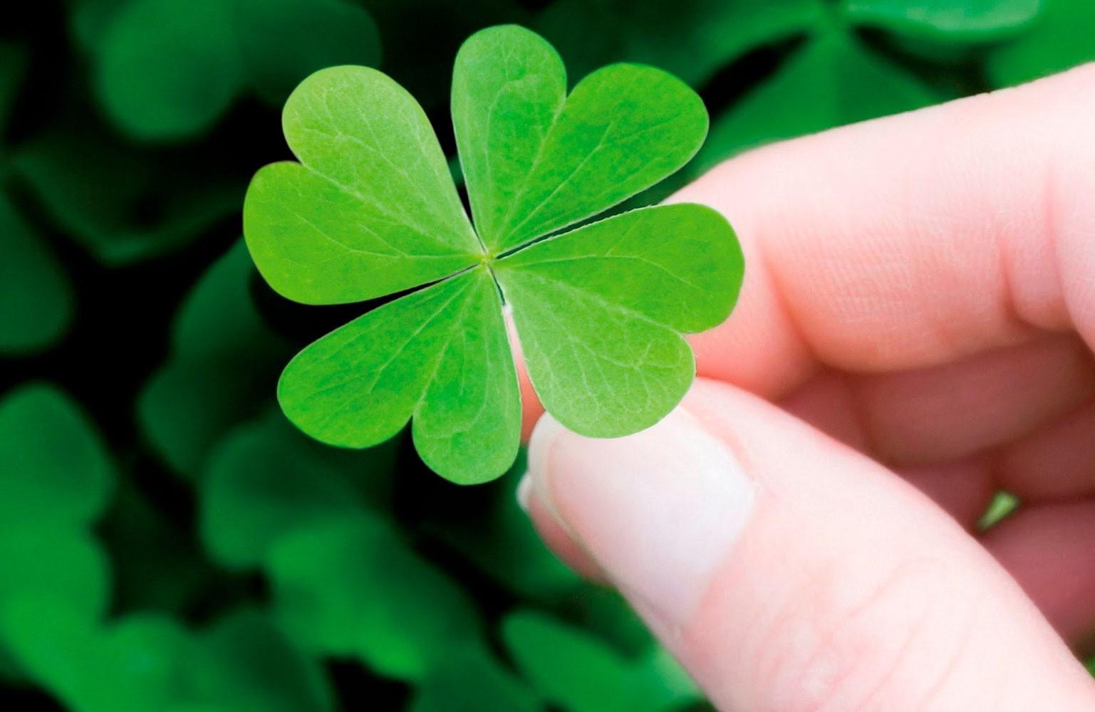 Hình ảnh đẹp về sự may mắn