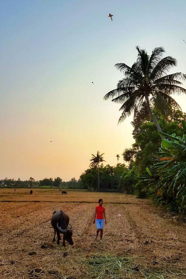 Hình ảnh làng quê yên bình