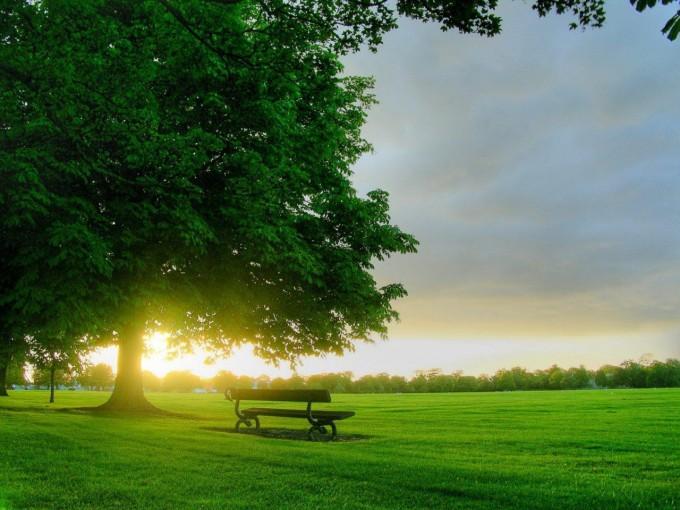 Hình ảnh về sự yên bình